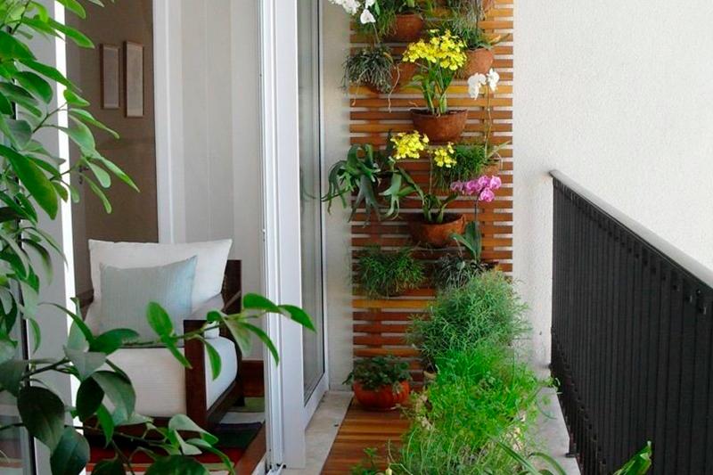 Sacada Com Decoração Cheia de Plantas