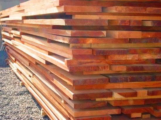Conheça os principais usos e aplicações da madeira cupiúba.