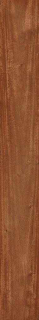 Características da madeira mogno.