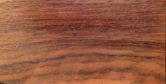 Textura e coloração do jacarandá-da-baía.