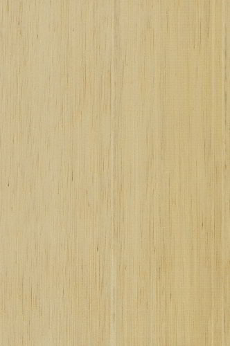 Veja as características da madeira marupá.