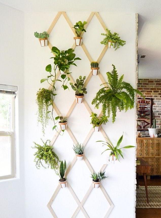 Treliça de madeira para jardim vertical dentro de casa.