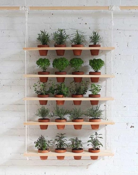 Jardim vertical em vasos de plantas apoiados em suportes de madeira.