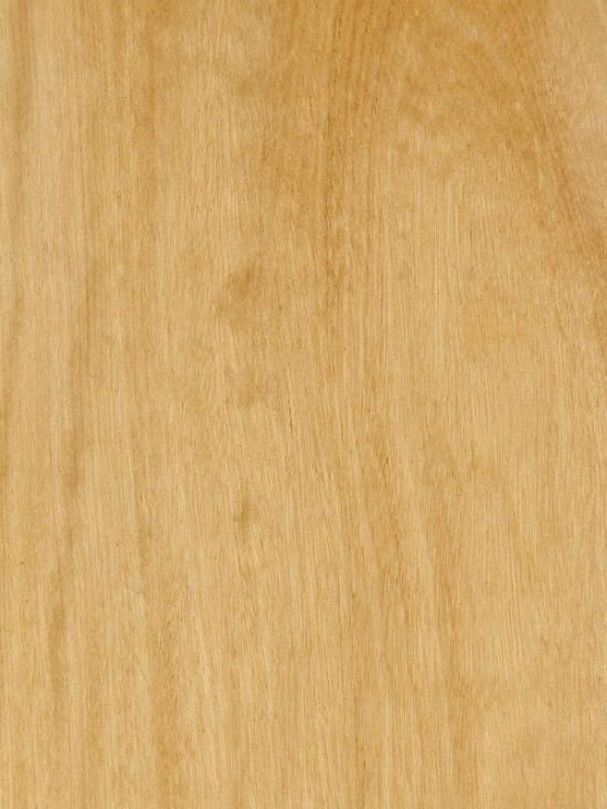 Textura da madeira amarelão (pau-amarelo).